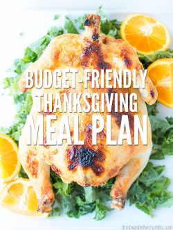 Free thanksgiving dinner meal plan including traditional dishes, gourmet sides, and dessert ideas! Save time with this premade food menu and shopping list. :: DontWastetheCrumbs.com