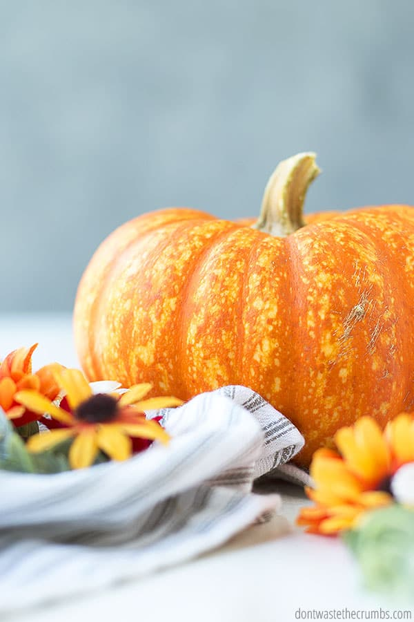 Shopping grocery store sales is a great way to plan a Thanksgiving dinner on a budget. Try to shop for produce that is in season as well and save even more!