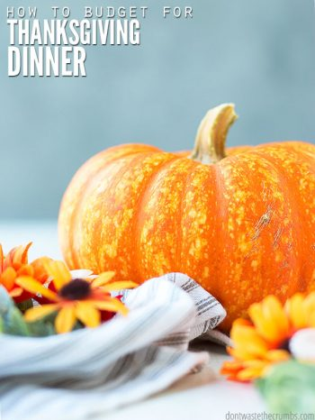 Host Thanksgiving dinner on a budget with this helpful guide. Includes tips, tricks, meal ideas & recipes to help you create a healthy & delicious menu. :: DontWastetheCrumbs.com