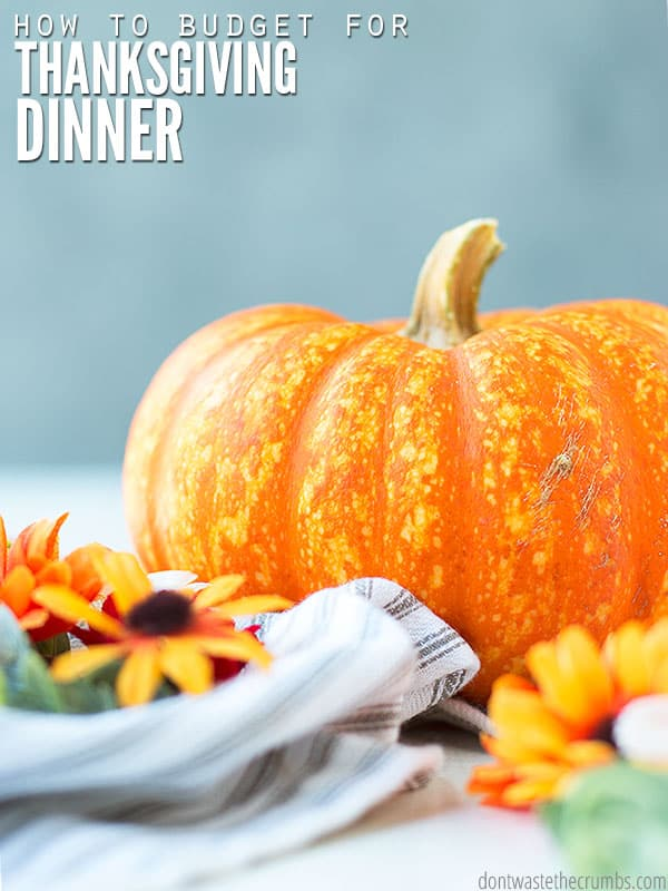Whether it's a Thanksgiving or Christmas meal, holiday dinner on a budget is truly possible. This helpful guide shares tips, tricks, and meal ideas to help you create a healthy and affordable menu.