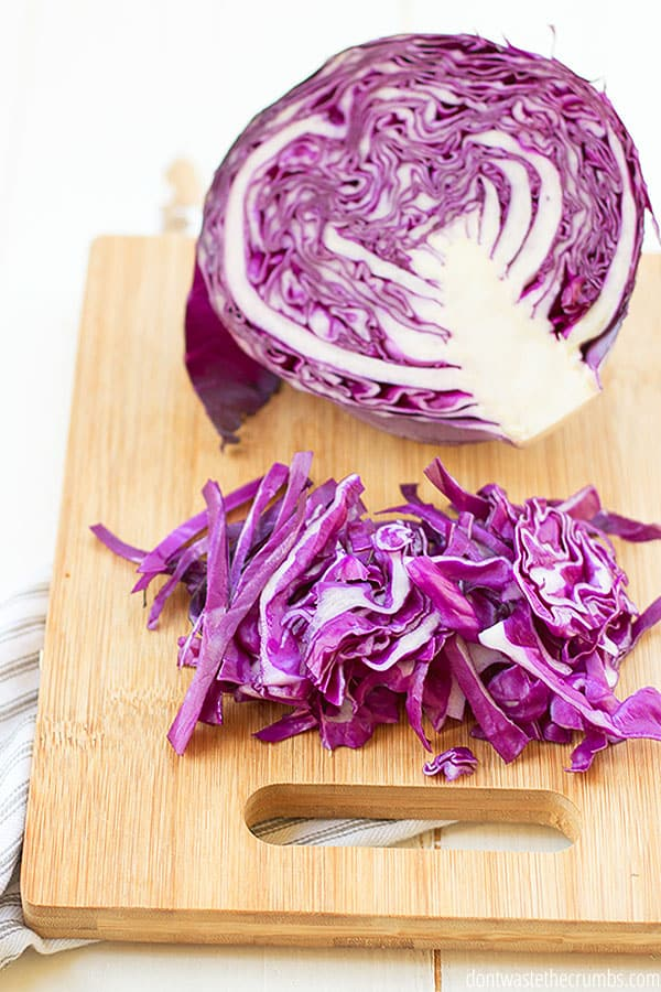 Cabbage is in season in January and can be used in the tastiest coleslaw and salad recipes! Yum!