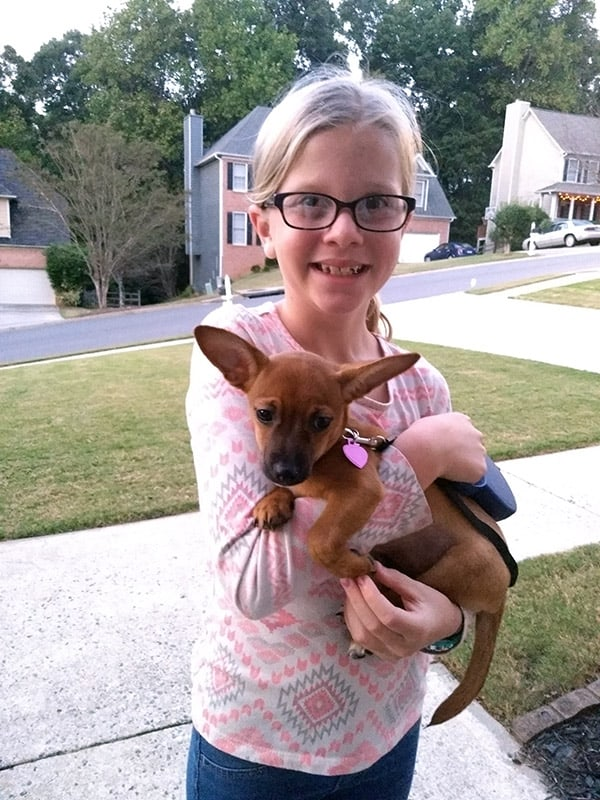 The girl and her adorable new puppy Chihuahua, Cammi!