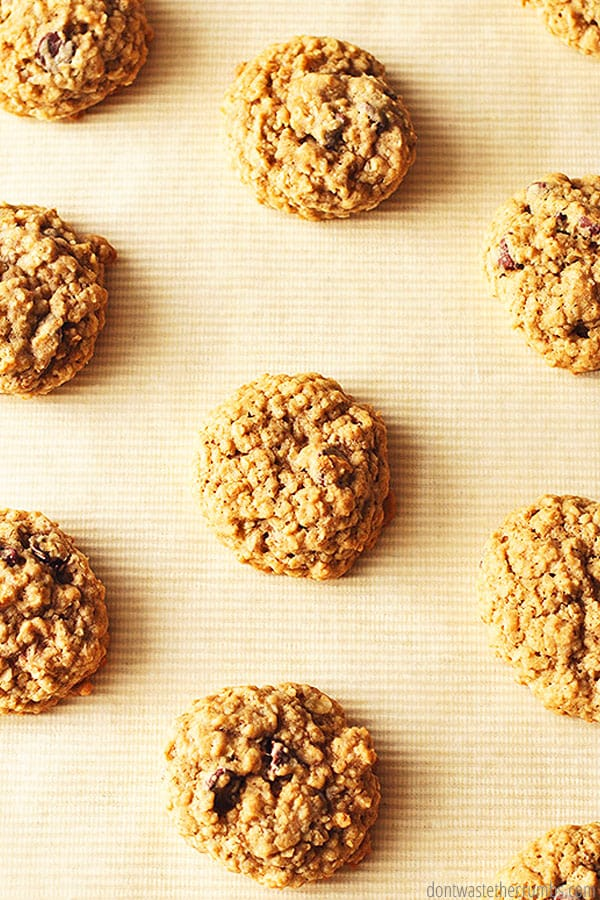 My family LOVES these oatmeal chocolate chip cookies! Made with whole grains, less sugar and chocolate, you can eat them guilt-free!