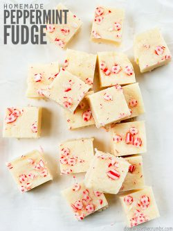 This 4-ingredient White Chocolate Peppermint Fudge recipe is a perfect winter treat! It's dairy-free, gluten-free, & tastes better than old fashioned fudge. :: DontWastetheCrumbs.com