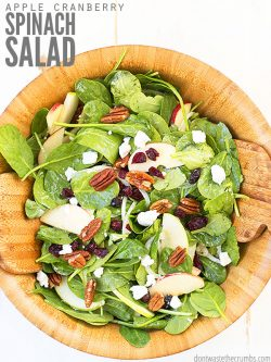 This healthy & versatile spinach salad is one of my favorite salad recipes for winter/fall! Top with fresh apples, homemade dressing, cranberries, & more! :: DontWastetheCrumbs.com