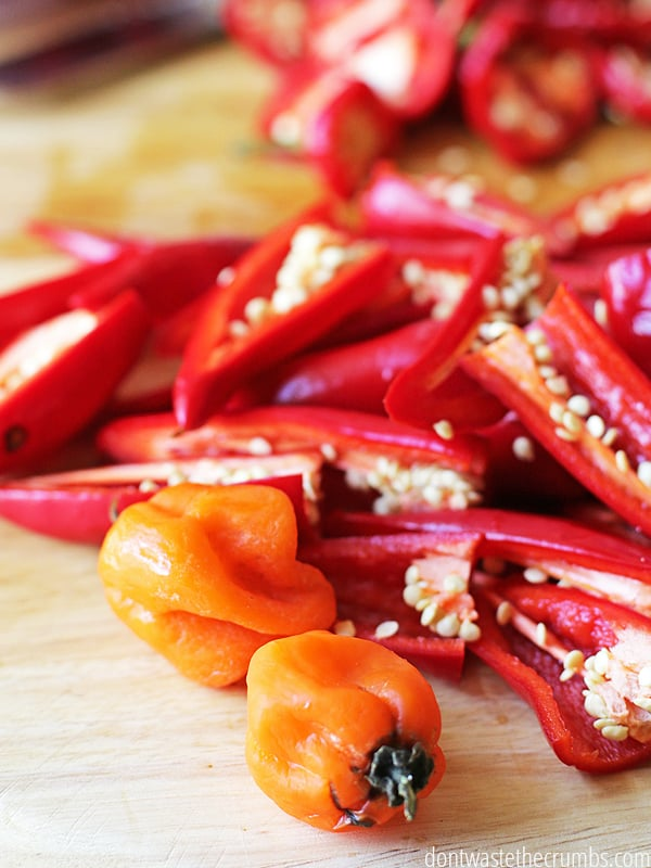 When you slice your hot peppers for homemade hot sauce, be sure to wear gloves to protect your skin from the insides of the peppers. The seeds and membrane are where most of the heat are! ::dontwastetherumbs.com