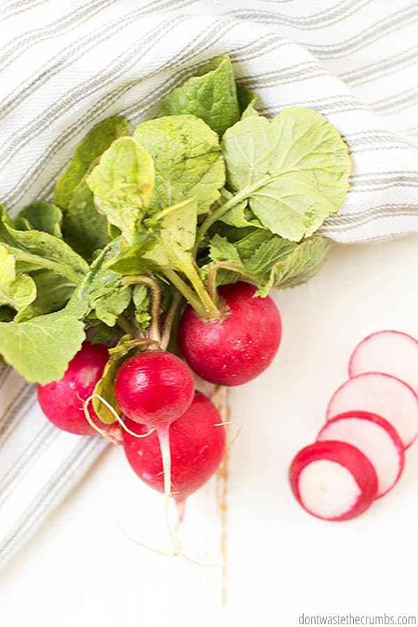 Radishes are a great source of potassium, calcium and antioxidants. They're also a benefit for the cardiovascular system. Radishes are known for their pungent flavor and crunch.