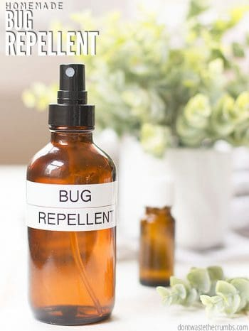 Make your own bug spray with just a few ingredients. Homemade bug repellent works for mosquitoes, gnats, flies and ticks depending on what oils you have! :: DontWastetheCrumbs.com