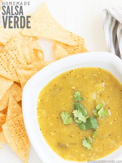 This authentic Salsa Verde recipe uses tangy tomatillos & is so quick & easy to make in a blender! Goes perfectly with your favorite healthy Mexican dishes.