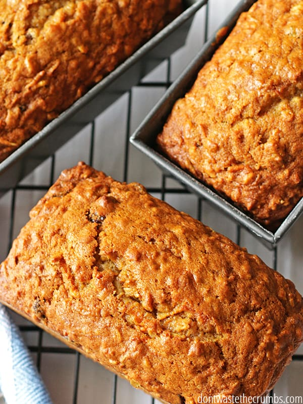 Carrot bread is perfect for breakfast! Serve warm with some butter for a delicious and wholesome breakfast treat.