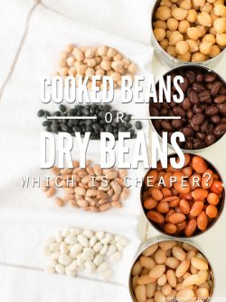 Which is cheaper, canned or dry beans? I break down price, nutrition and cooking time for 4 types of beans. Plus recipes for how to cook in a slow cooker! :: DontWastetheCrumbs.com