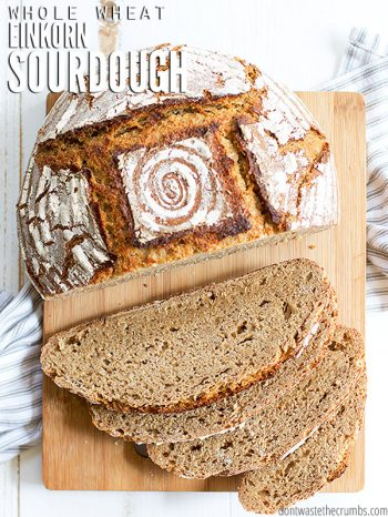 Healthy and easy recipe for whole wheat Einkorn sourdough bread that is great for sandwiches and uses 100% whole grain einkorn flour & a sourdough starter. :: DontWastetheCrumbs.com