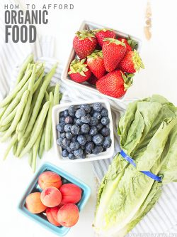 Huge list of 35+ resources helping you find & afford organic food in your area. Find CSA, markets, and even budgeting tools to eat well without going broke! :: DontWastetheCrumbs.com