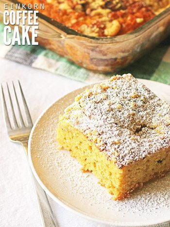 This Overnight Einkorn Coffee Cake recipe is lightly sweet & cinnamon-y! Made with whole grains and kefir, it's healthy, moist & delicious! Serves perfectly for breakfast with a hot Cinnamon Dolce Latte!