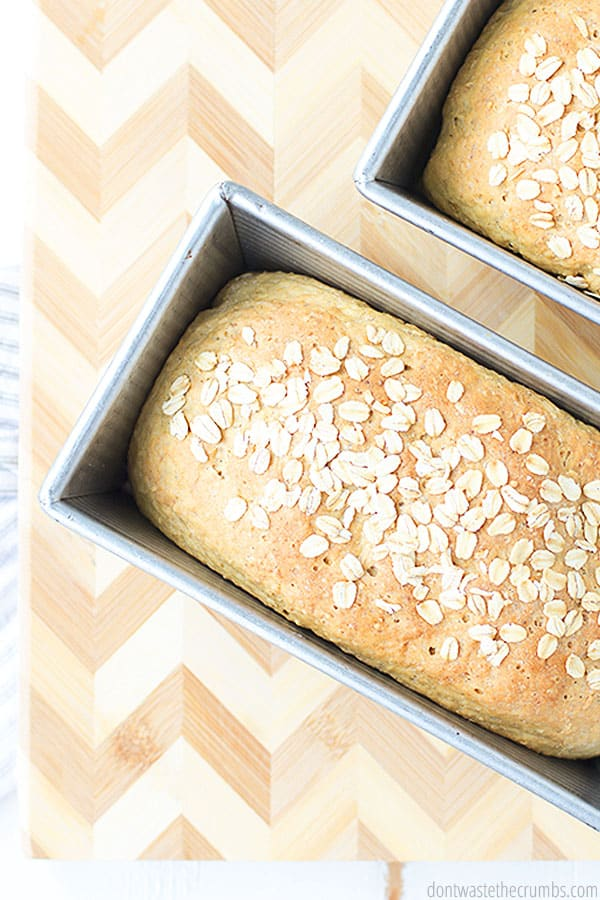 Oatmeal bread is perfect for breakfast, making peanut butter and jelly sandwiches, and more! It is healthy AND delicious, and family approved!
