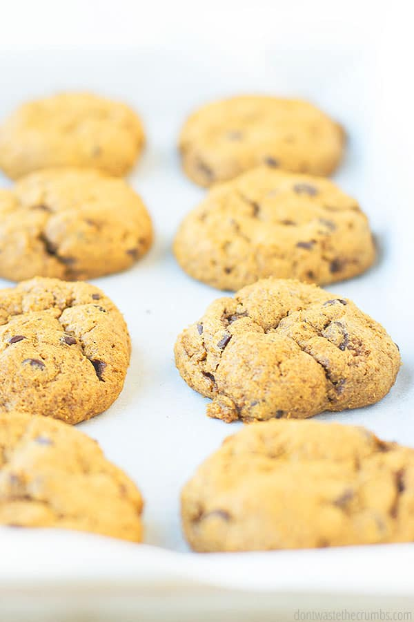 Freshly baked cookies shown from the side. Laying on a piece of parchment paper and a cookie sheet.
