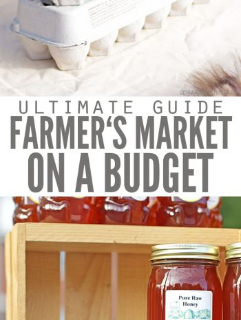 Shop with a Farmers Market Budget and use practical and straight-forward tips - including what to do before you leave and while you're shopping the market. Check out my posts on meal planning and seasonal shopping, for more support on real food budgeting.