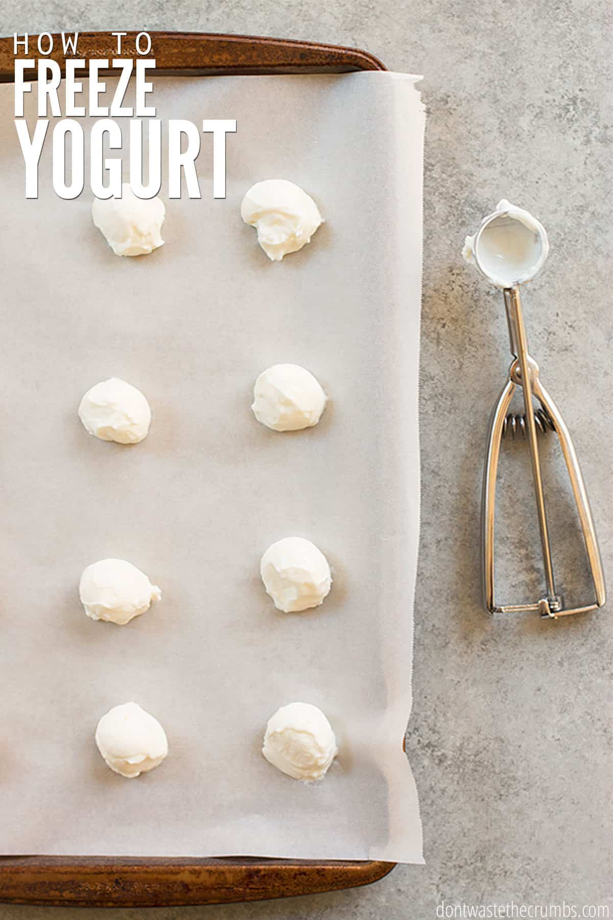Stone cookie sheet, covered with white parchment paper with eight scoops of white yogurt. Text overlay How to Freeze Yogurt.