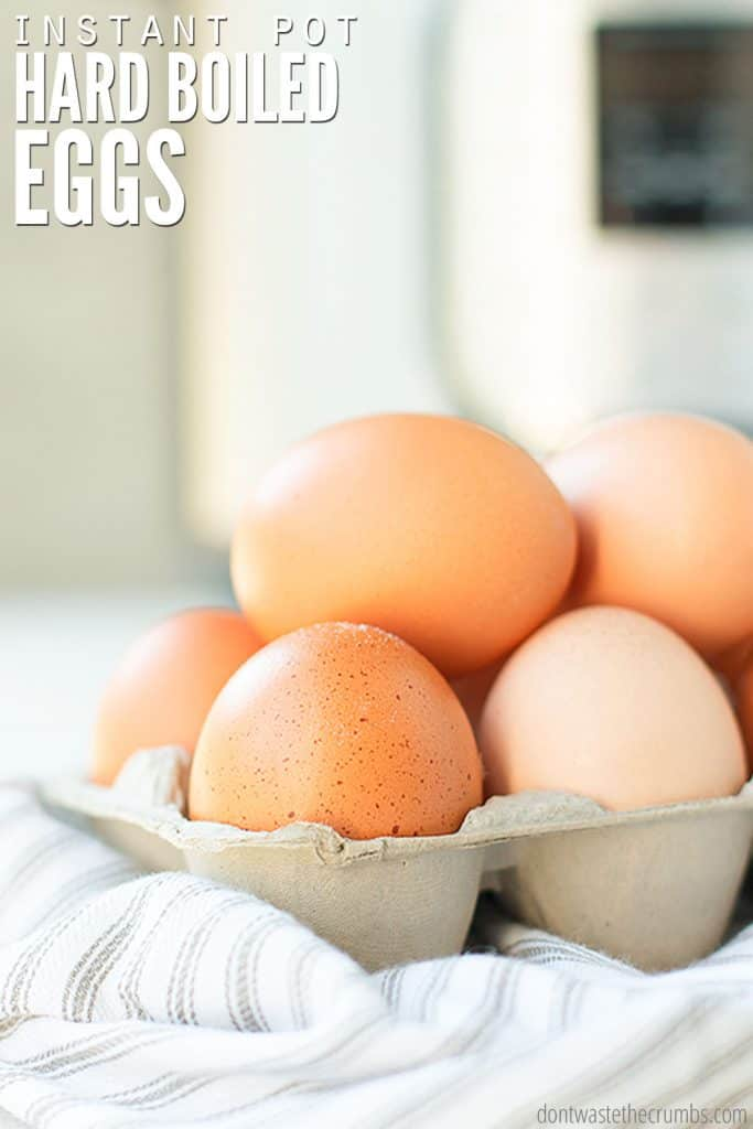 An egg carton is loaded with speckled, brown, fresh, farm eggs.
