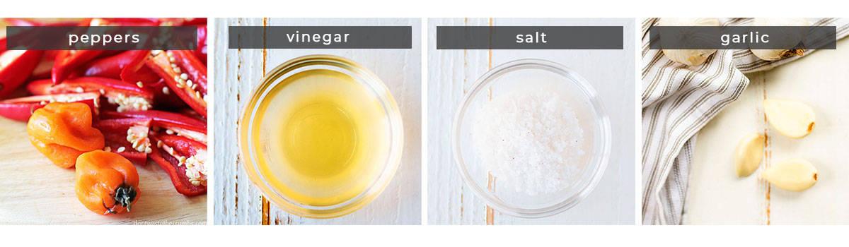 Image containing recipe ingredients peppers, vinegar, salt, and garlic.